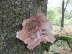 Playing in Woods with Fairies - Celtic Tree Folklore
