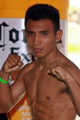 Another picture of Payasito Hernandez in fighting stance.  This picture and the above were furnished through the internet courtesy of SMIKS in answer to my request.