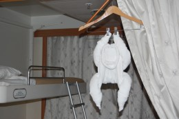 Our Host, the guy who took care of our adjoined suites, left us many towel animals, this monkey was one of our favorites.