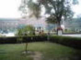 DU lawn