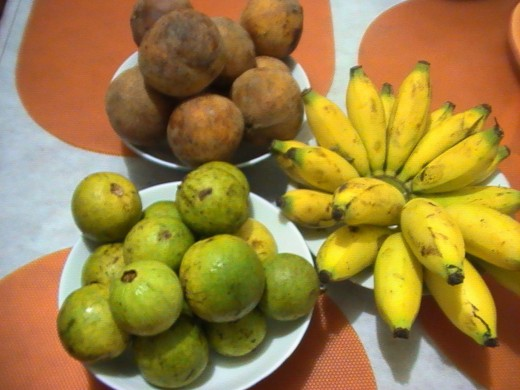 Tropical fruits: santol, guava and banana (Photo: Ireno Alcala)
