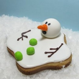 The Decorated Cookie