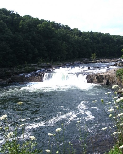 Ohiopyle Falls (20 feet high)