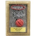 There are all types of basketball awards besides trophies.  Wall plaques like this do not require a display case for long term visibility.