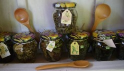 Natures Treasure Chest: Herbal Remedies.