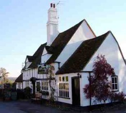 The bull and butcher turville