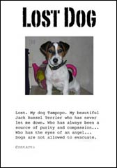 Create a poster for your Lost Dog