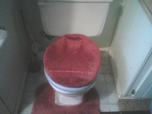 Hey, guys always try and remember to put the toilet stool lid down,  after to use, so the women want have too.