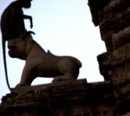 A monkey rests on the head of a stone lion. 'Jayastambha', Chittorgarh.