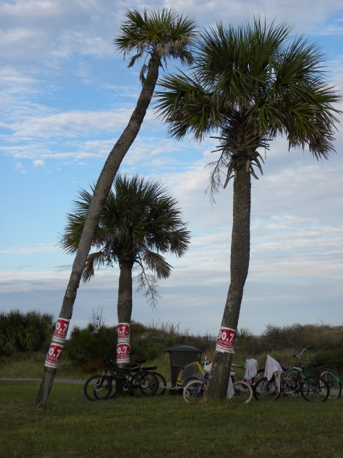 Beach concerts are great.  Park your bike, and walk up and listen.  All while enjoying the beauty of the beach.
