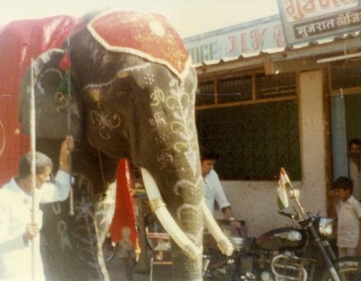 Baba's elephant