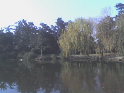 beautiful Xihu (West Lake)