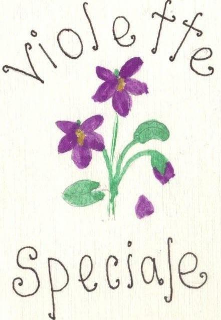 Violet Special