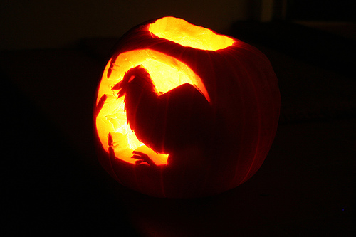 Hallowe'en Crow  ndrwfgg @ flickr