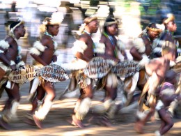 Zulu Men in Traditional Dance Mode