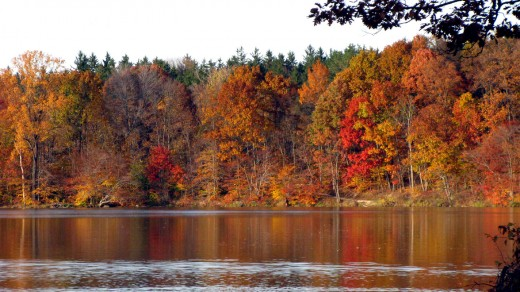 Ohio Fall Reflections - Hinckley Lake.  Christine B. (c) 2009