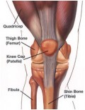 What is Knee Pain? Causes, Symptoms, Diagnosis and Treatments