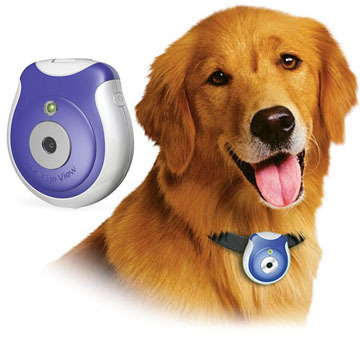 Uncle Milton Pets-Eye-View Pet Collar Camera, Spy Cam! Picture courtesy of http://stores.shop.ebay.com/SOMEGR8DEALS__W0QQ_armrsZ1