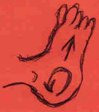 Feet and Heels: GENTLE massage in a circular motion the heels of the foot, while also pressing gently inward on the bottom of the foot, using your thumb.