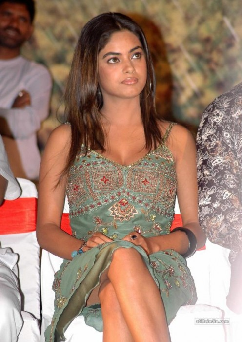 Indian Actress Cute Sey Babe Meera Chopra Nila Hot Cleavage Gallery