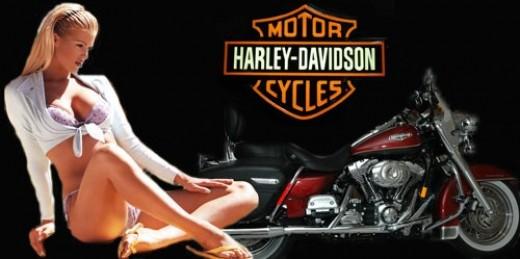 Man Cave Cutz : Harley davidson gifts