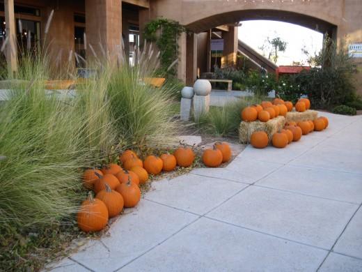 Pumpkins lining a sidewalk in Tubac, AZ