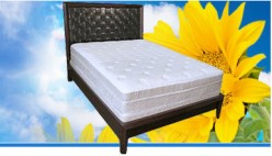 Why Everyone Will Want a Memory Foam Mattress in 2010