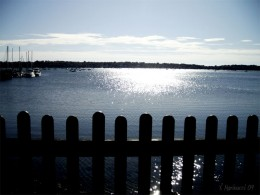 A view from the House of Seven Gables' garden.