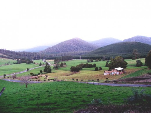 Beautiful countryside in Tasmania