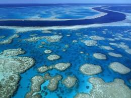 The unbelievable Barrier Reef