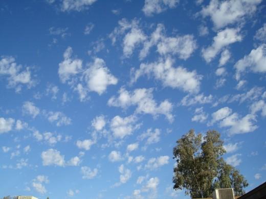 A November Desert Sky