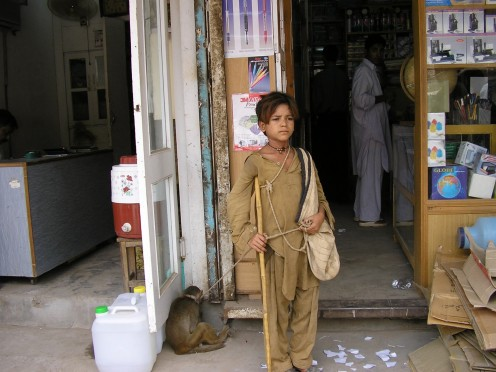 Monkey boy,Pakistan