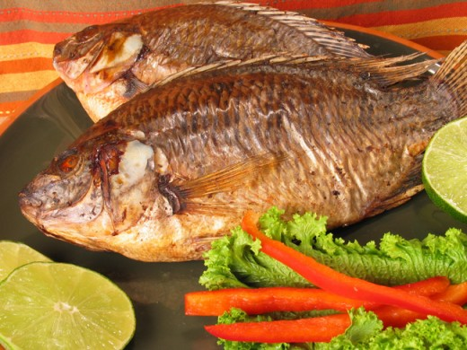 Barbecue Tilapia is so delicious. And impressive when served at your next dinner party.