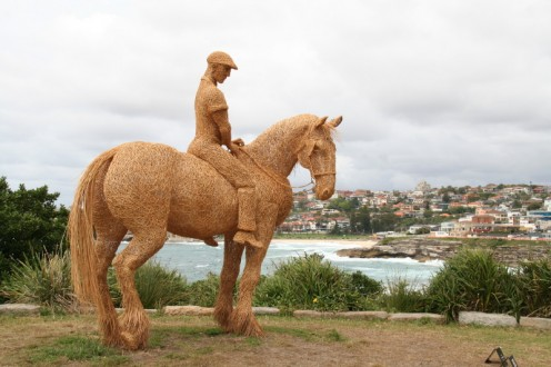 Horse and rider looking towards Bronte Beach