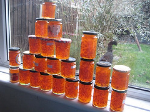 A fine Batch of Lushious Marmalade