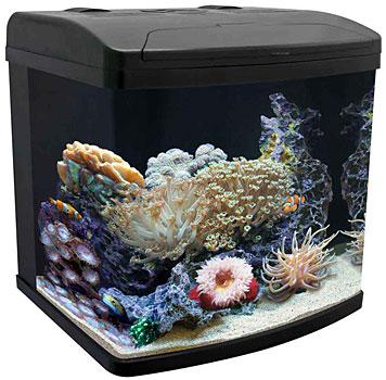 Aquapod Nano Reef