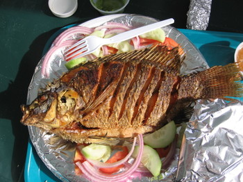 If you make the recipe for barbecue tilapia please post a comment below.