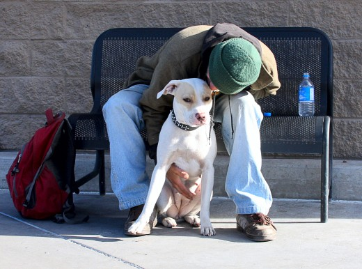 To this homeless man, his dog is his entire world.  (Photo by Beverly Lussier)