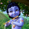 radhekrsna99k profile image