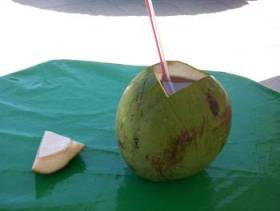 Refreshing coconut water drink