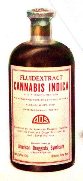 Cannabis Extract. Photo credit Wikicommons.