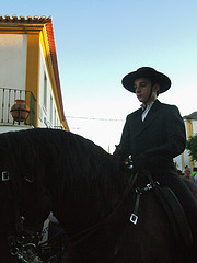 A proud Rider ready for a Bull fight. In Portugal the bull is not killed so the horses need to be super agile.