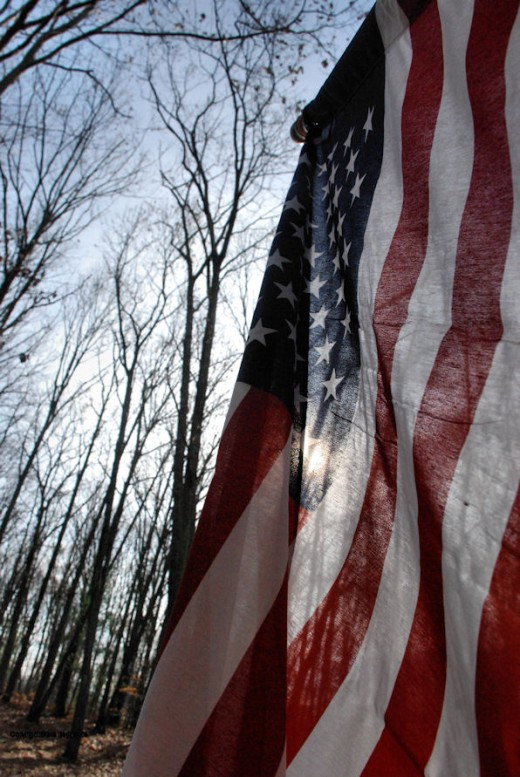 The American flag ripples in the breeze on this Veterans Day.