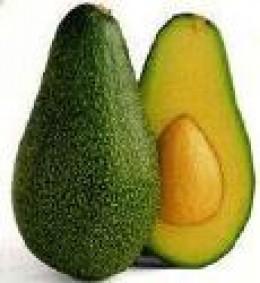 avocadofruit.com