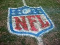 2009 NFL Football Week Ten Preview and Picks