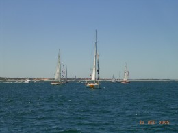 Annual Christmas Yacht Race