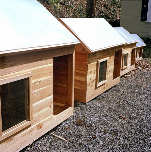 A Perfect Size Dog House for Every Dog! Flickr image by Brandongreer
