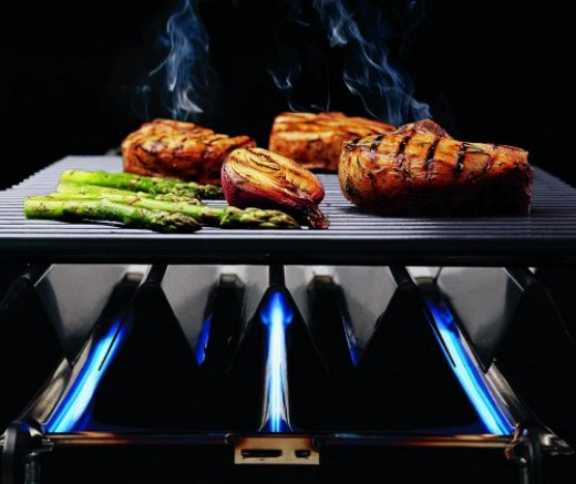 Barbeque conducts heat and flavor with air inside a closed hood