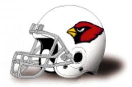 Arizona Cardinals 6-3