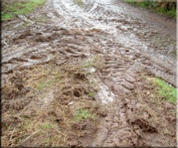 Muddy lane to my house